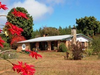 Luwana Forest Lodge