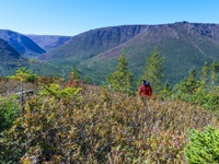 Parc national Tour de la Gaspésie