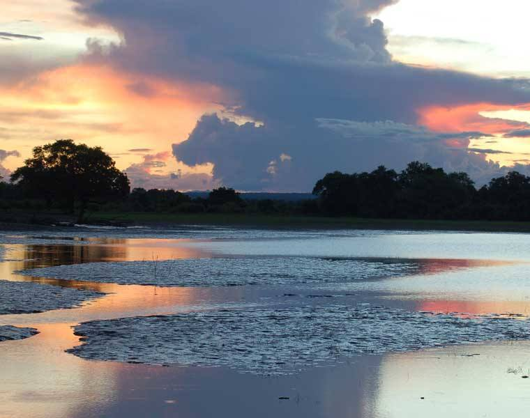 Paysage de South Luangwa