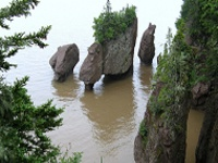 rochers hopewell rocks