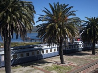 train de knysna